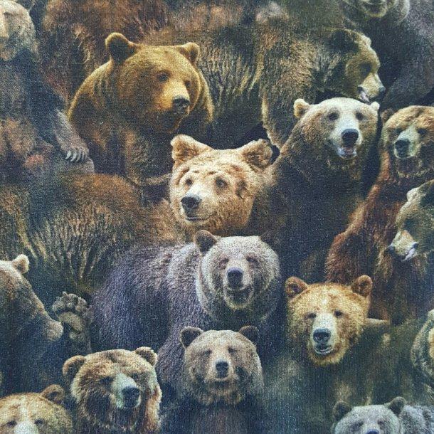 Brune Bjørne